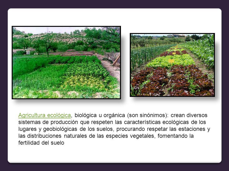 Agricultura ecológica, biológica u orgánica (son sinónimos): crean diversos sistemas de producción que respeten las características ecológicas de los lugares y geobiológicas de los suelos, procurando respetar las estaciones y las distribuciones naturales de las especies vegetales, fomentando la fertilidad del suelo