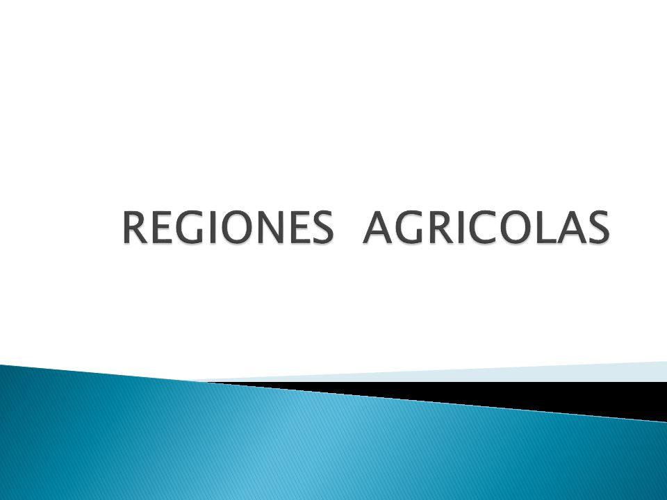 REGIONES AGRICOLAS