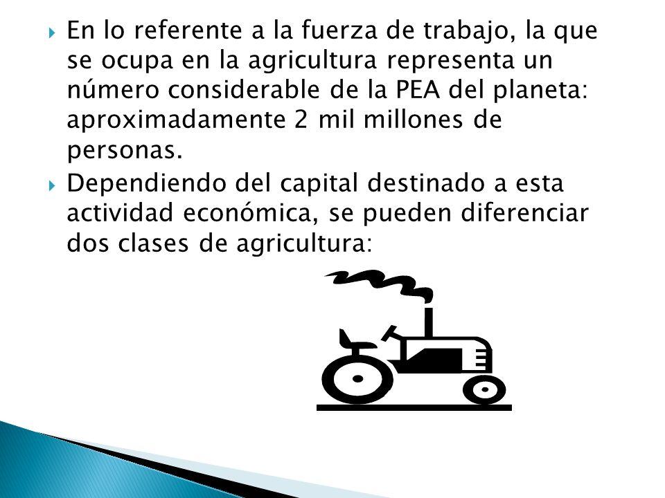 En lo referente a la fuerza de trabajo, la que se ocupa en la agricultura representa un número considerable de la PEA del planeta: aproximadamente 2 mil millones de personas.