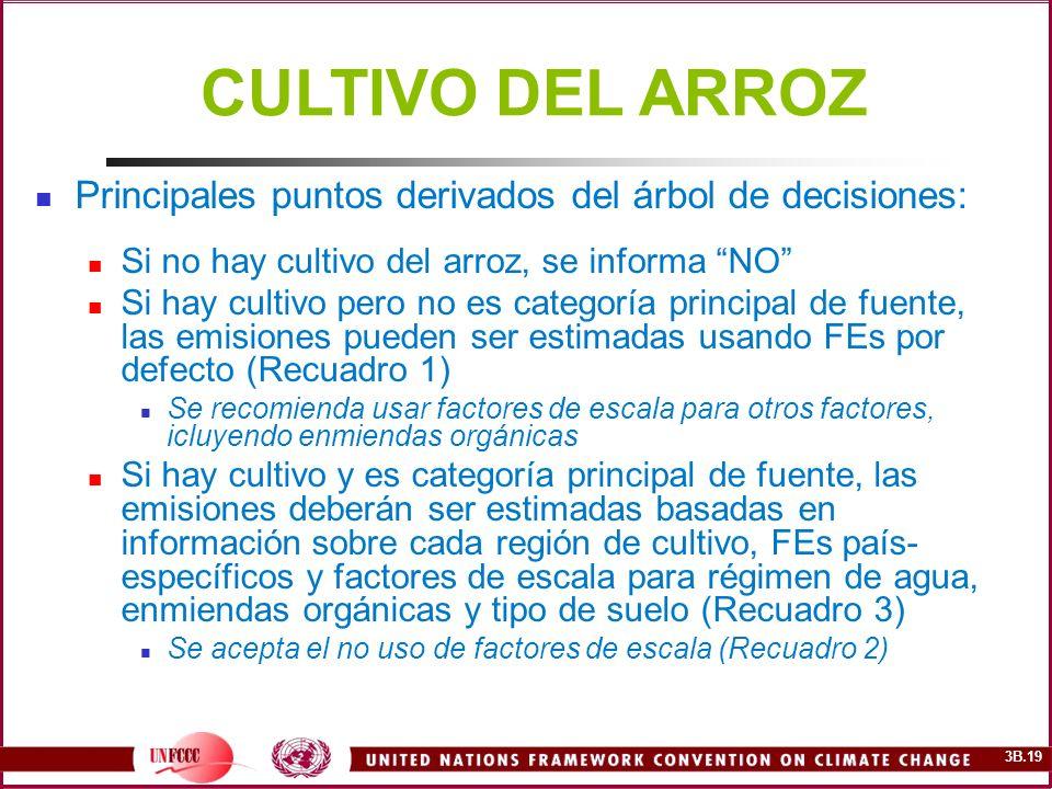 CULTIVO DEL ARROZ Principales puntos derivados del árbol de decisiones: Si no hay cultivo del arroz, se informa NO