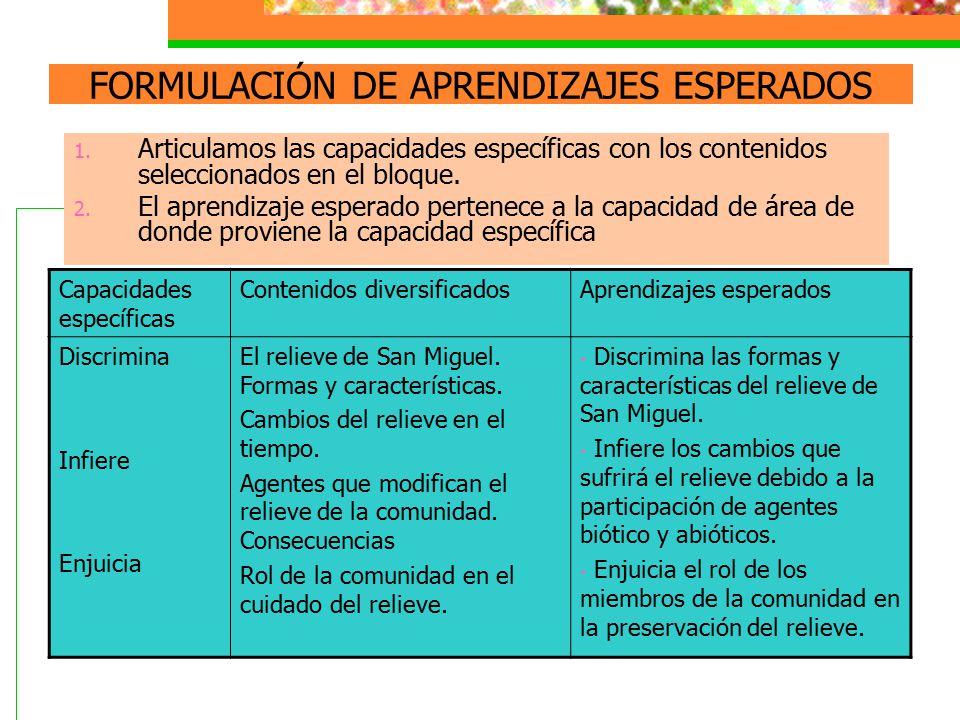 FORMULACIÓN DE APRENDIZAJES ESPERADOS