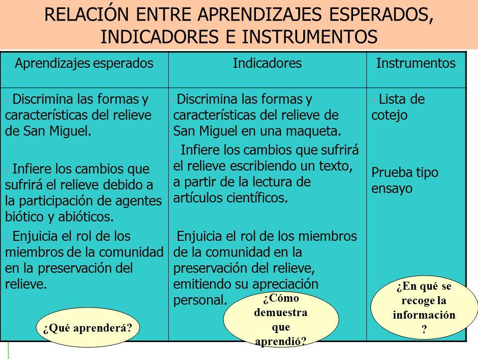 RELACIÓN ENTRE APRENDIZAJES ESPERADOS, INDICADORES E INSTRUMENTOS