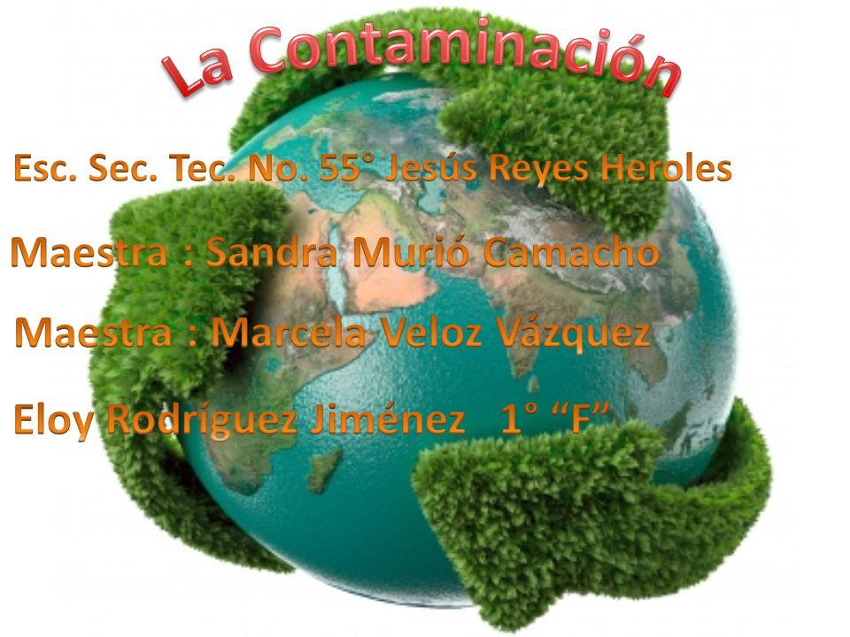 La Contaminación Maestra : Sandra Murió Camacho