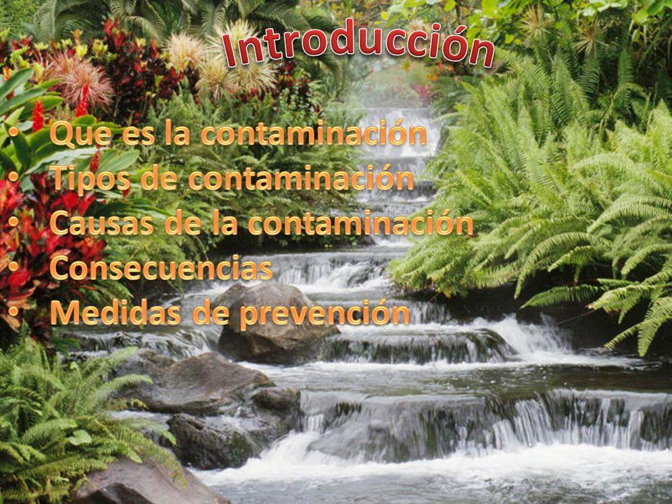 Introducción Que es la contaminación Tipos de contaminación