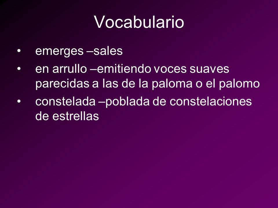 Vocabulario emerges –sales
