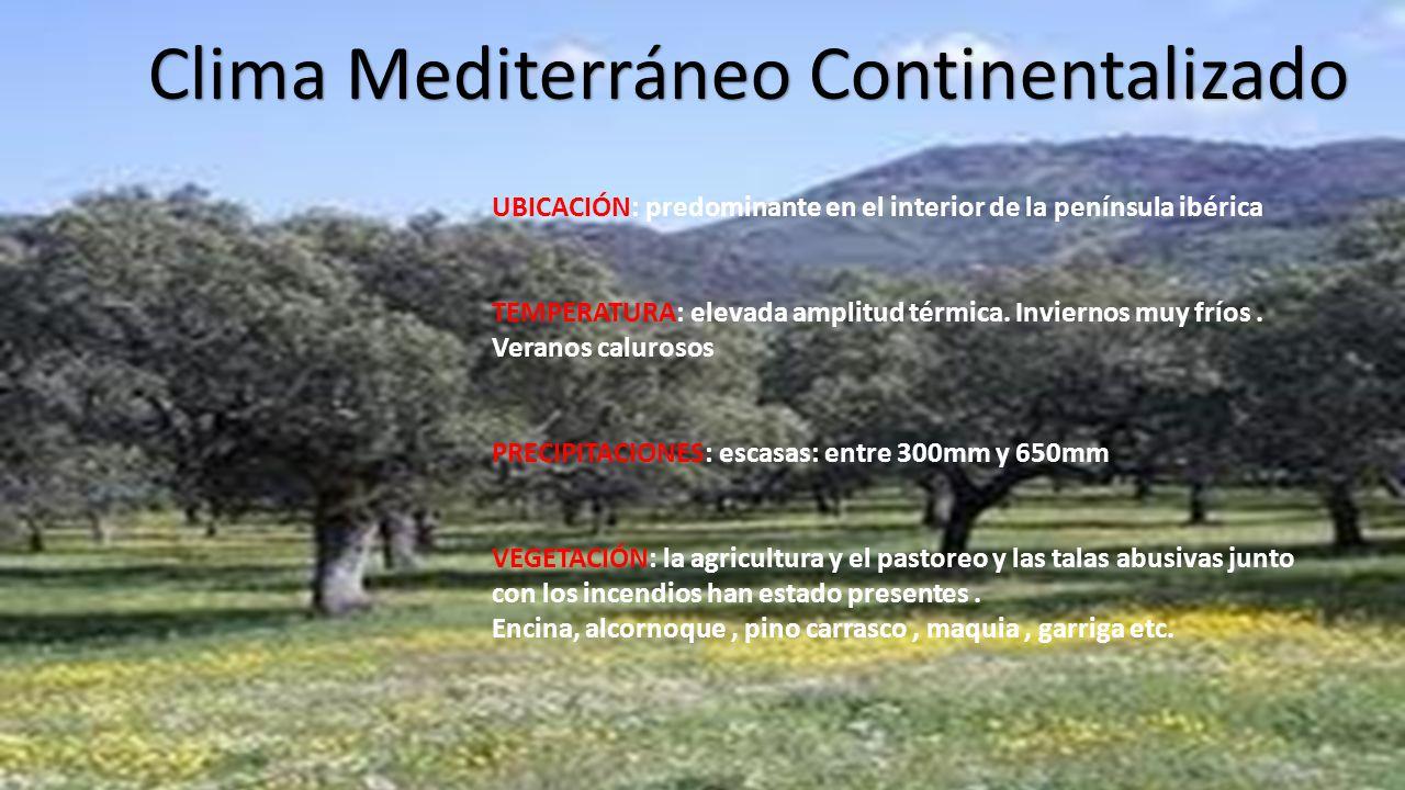 Los climas de espa a nekane garc a pa les ppt video for Clima mediterraneo de interior