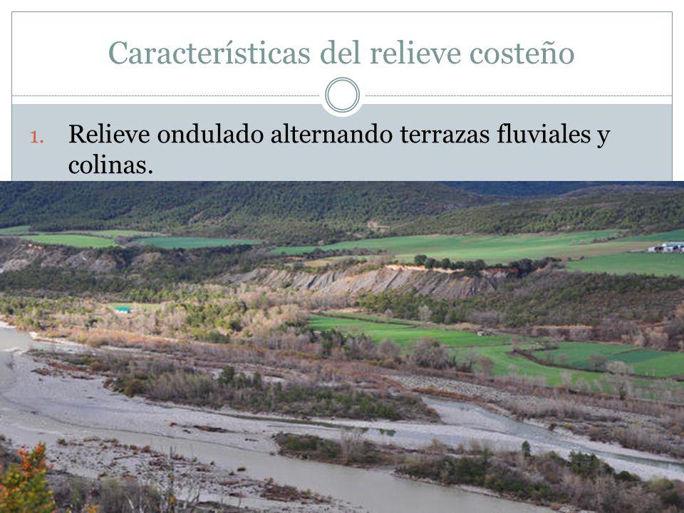 El relieve de la costa alfredo valdez ppt descargar for Terrazas fluviales