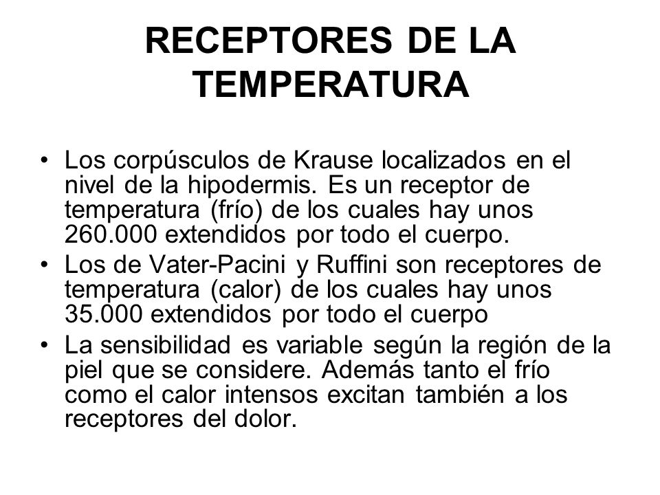 RECEPTORES DE LA TEMPERATURA