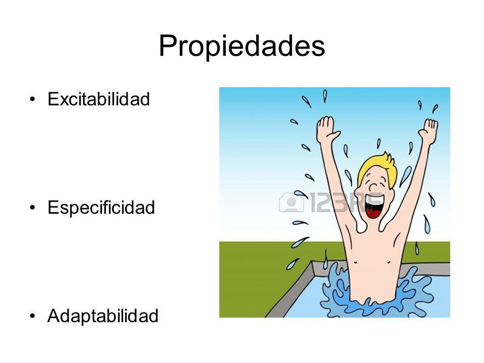 Propiedades Excitabilidad Especificidad Adaptabilidad