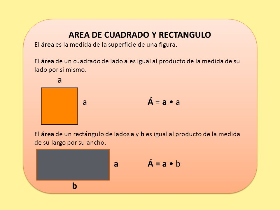 AREA DE CUADRADO Y RECTANGULO
