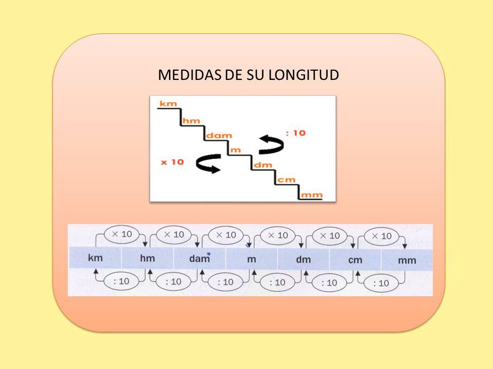 MEDIDAS DE SU LONGITUD