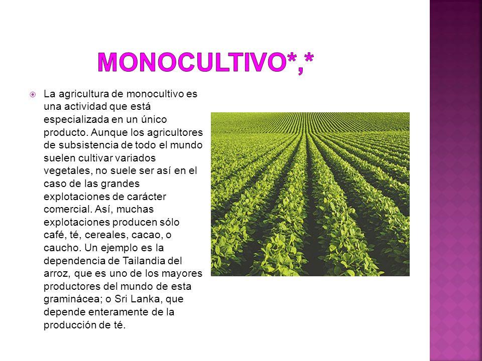 Monocultivo*,*