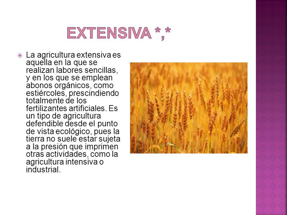 Extensiva *,*