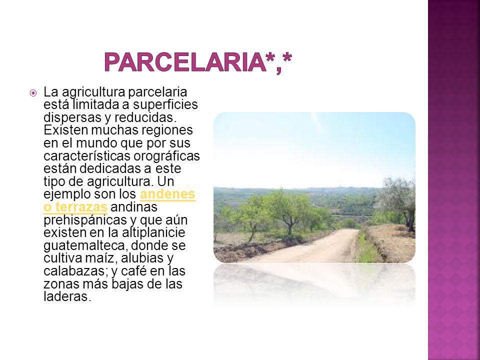 Parcelaria*,*