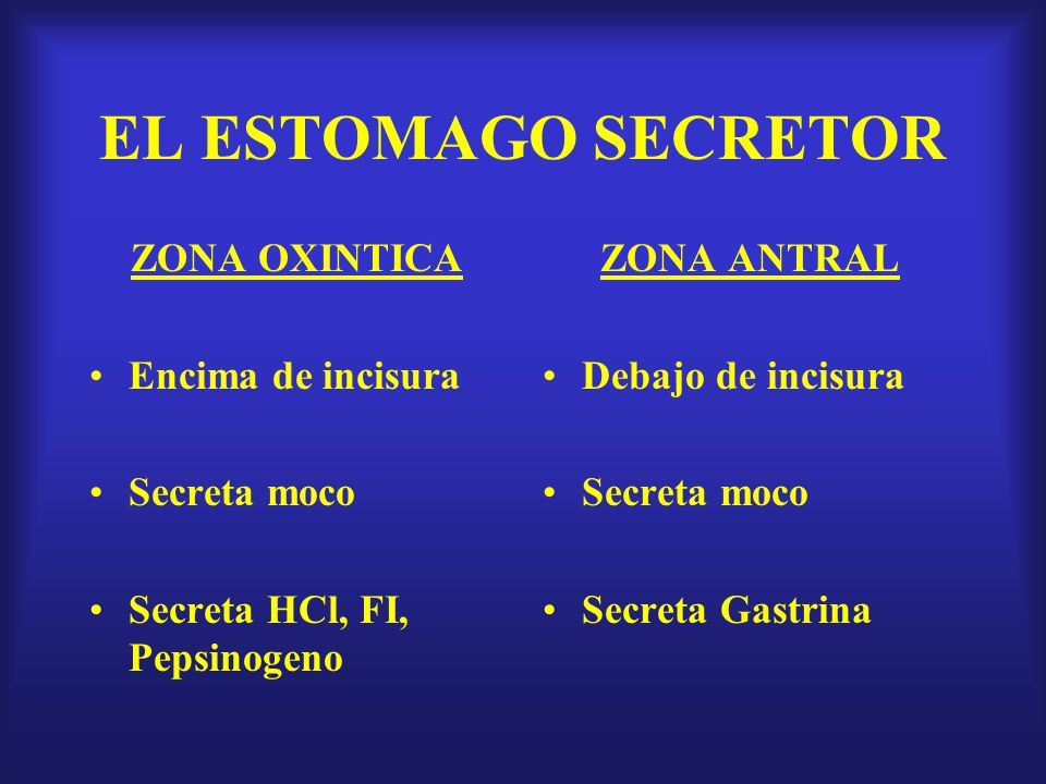 SERVICIO DE GASTROENTEROLOGIA HOSPITAL DANIEL CARRION - ppt descargar