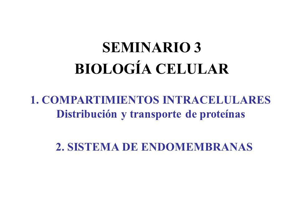 SEMINARIO 3 BIOLOGÍA CELULAR