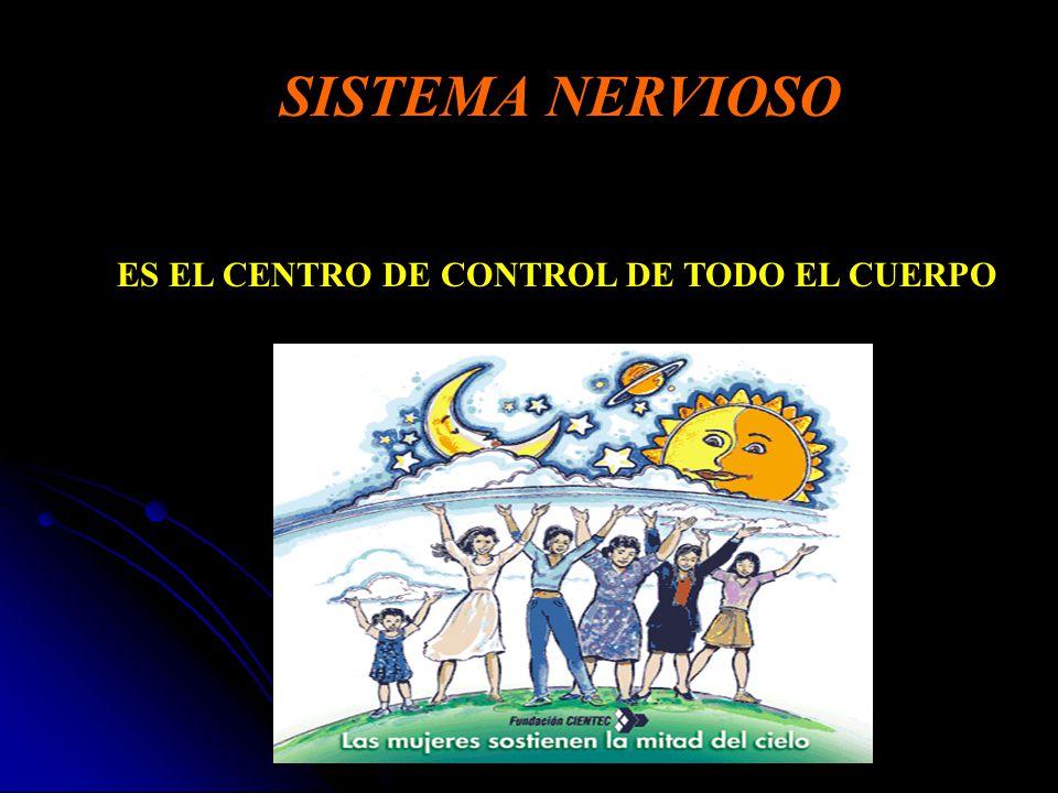 SISTEMA NERVIOSO ES EL CENTRO DE CONTROL DE TODO EL CUERPO. - ppt ...