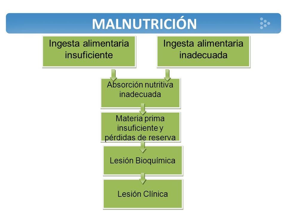 MALNUTRICIÓN Ingesta alimentaria insuficiente