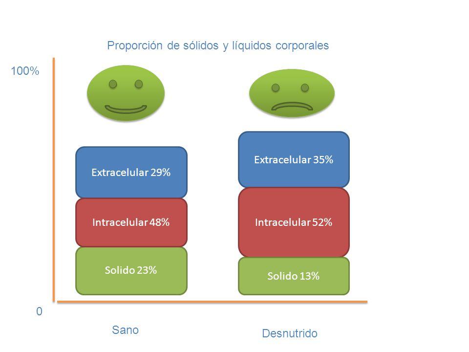 Proporción de sólidos y líquidos corporales