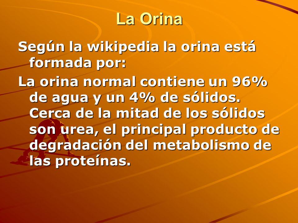 La Orina Según la wikipedia la orina está formada por: