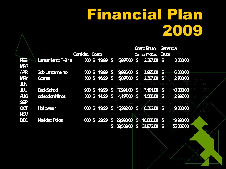 Financial Plan 2009
