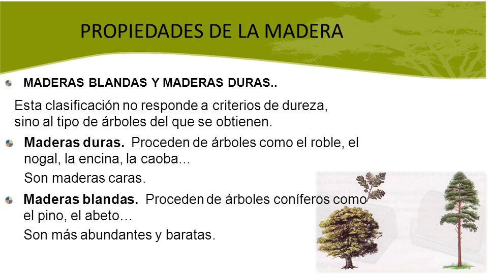 La madera la madera es un material de origen vegetal que for Cuales son los tipos de arboles