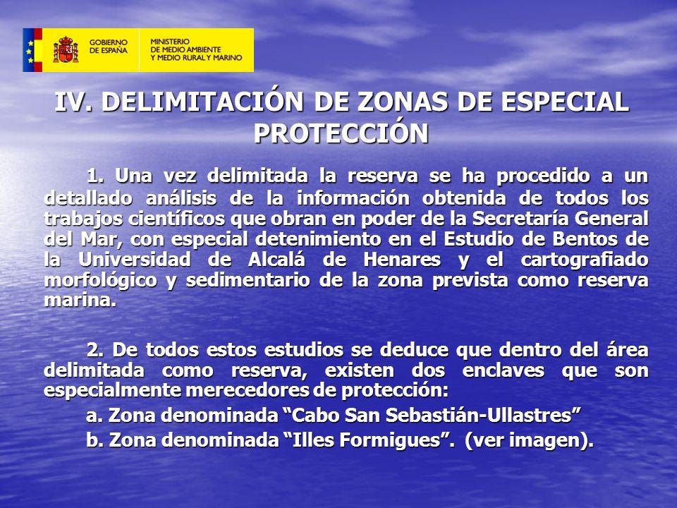 IV. DELIMITACIÓN DE ZONAS DE ESPECIAL PROTECCIÓN