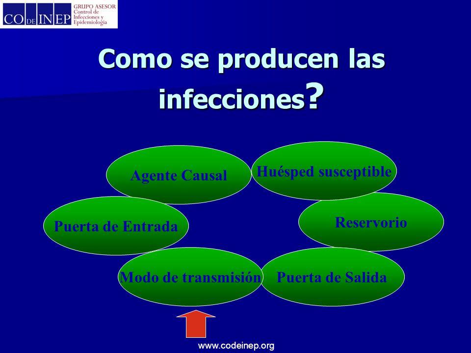 Como se producen las infecciones