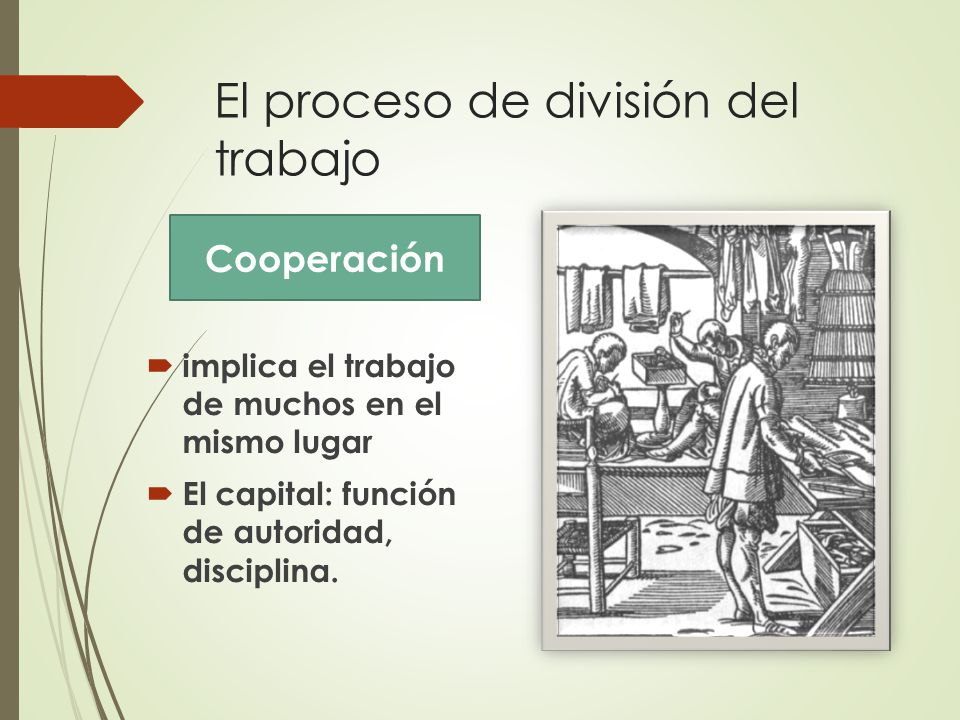 El proceso de división del trabajo