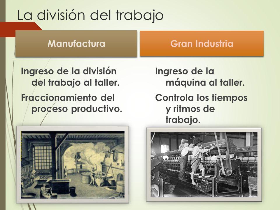 La división del trabajo
