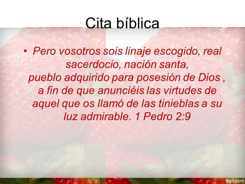 Cita bíblica