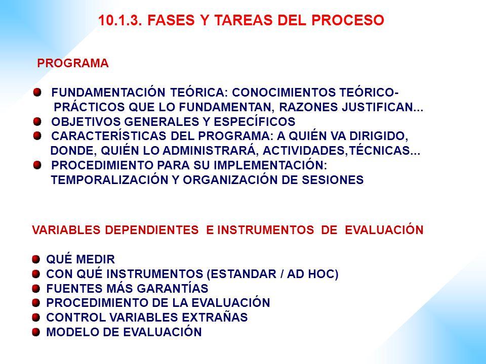 10.1.3. FASES Y TAREAS DEL PROCESO