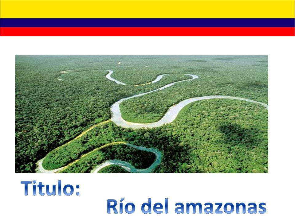 Titulo: Río del amazonas