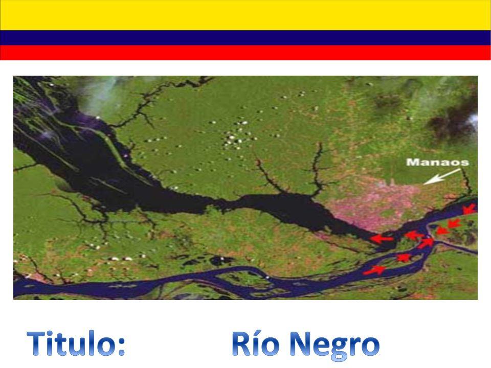 Titulo: Río Negro