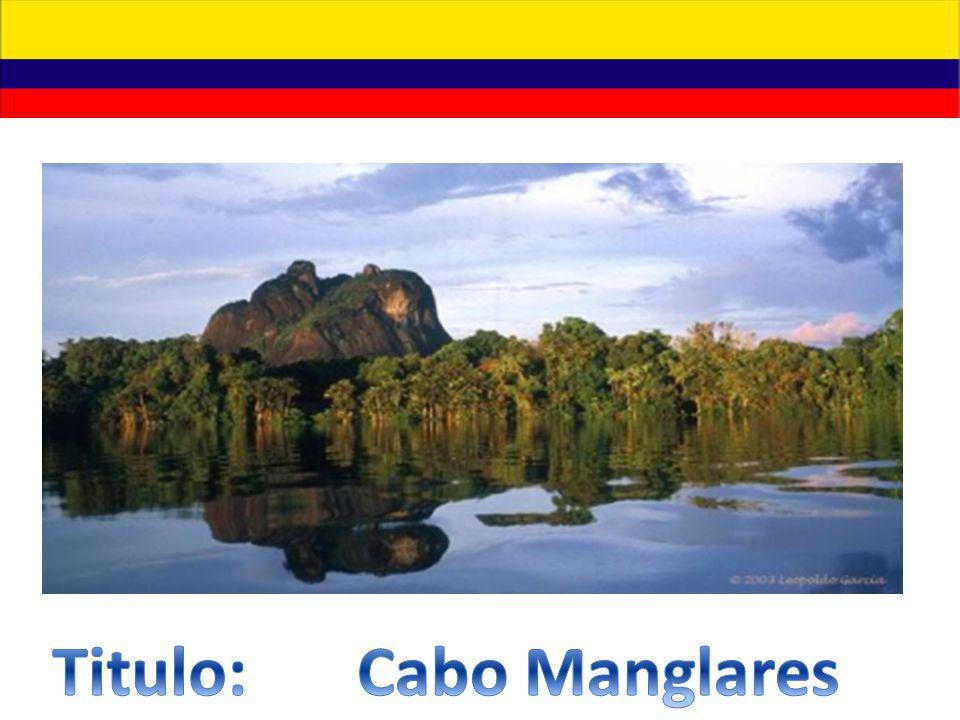 Titulo: Cabo Manglares
