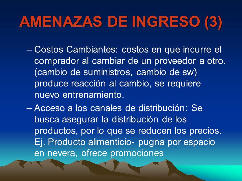 AMENAZAS DE INGRESO (3)