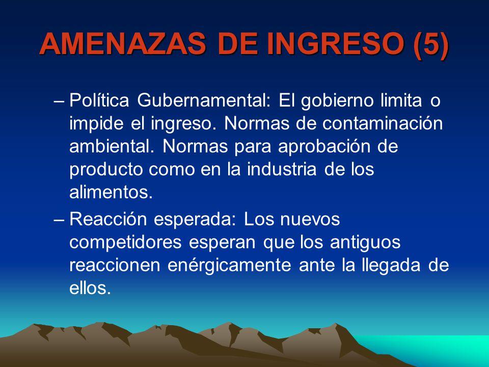 AMENAZAS DE INGRESO (5)