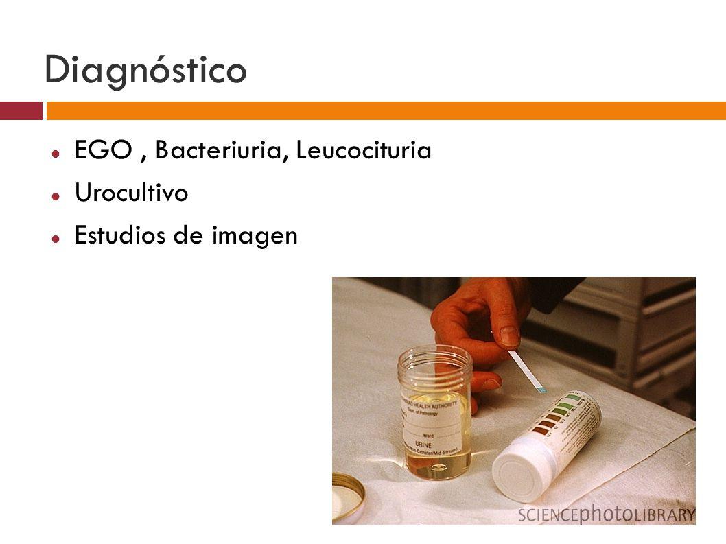 Diagnóstico EGO , Bacteriuria, Leucocituria Urocultivo
