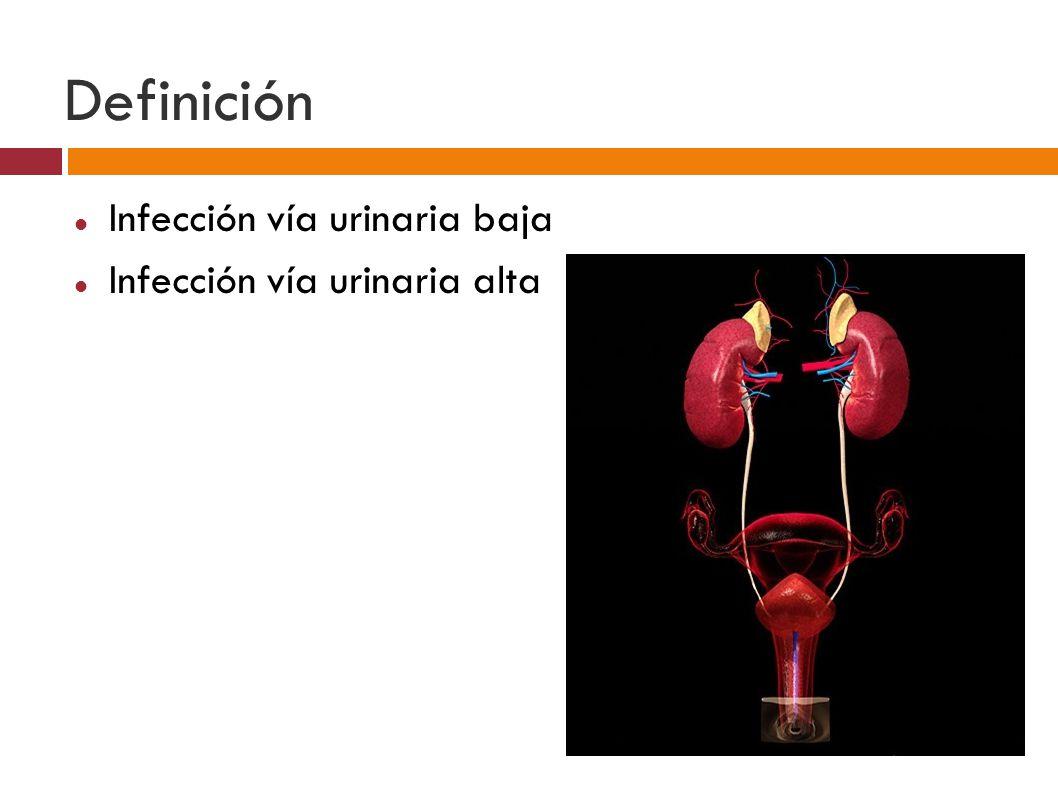 Definición Infección vía urinaria baja Infección vía urinaria alta
