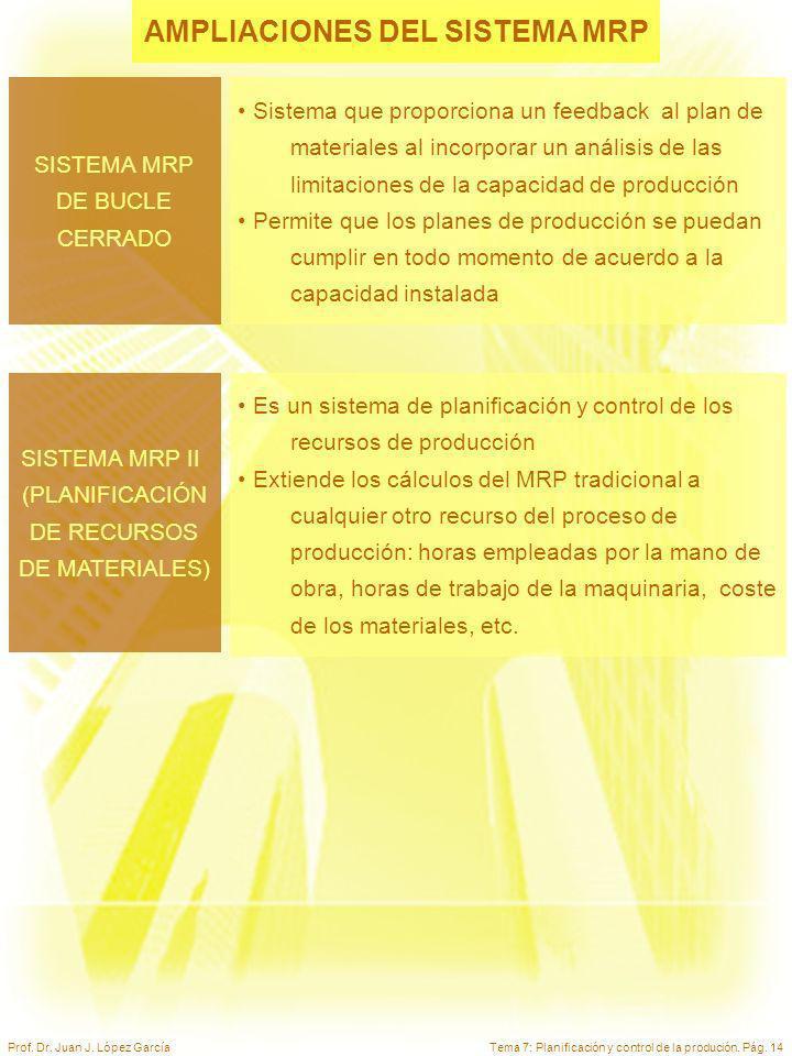 AMPLIACIONES DEL SISTEMA MRP