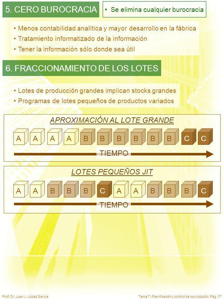 6. FRACCIONAMIENTO DE LOS LOTES