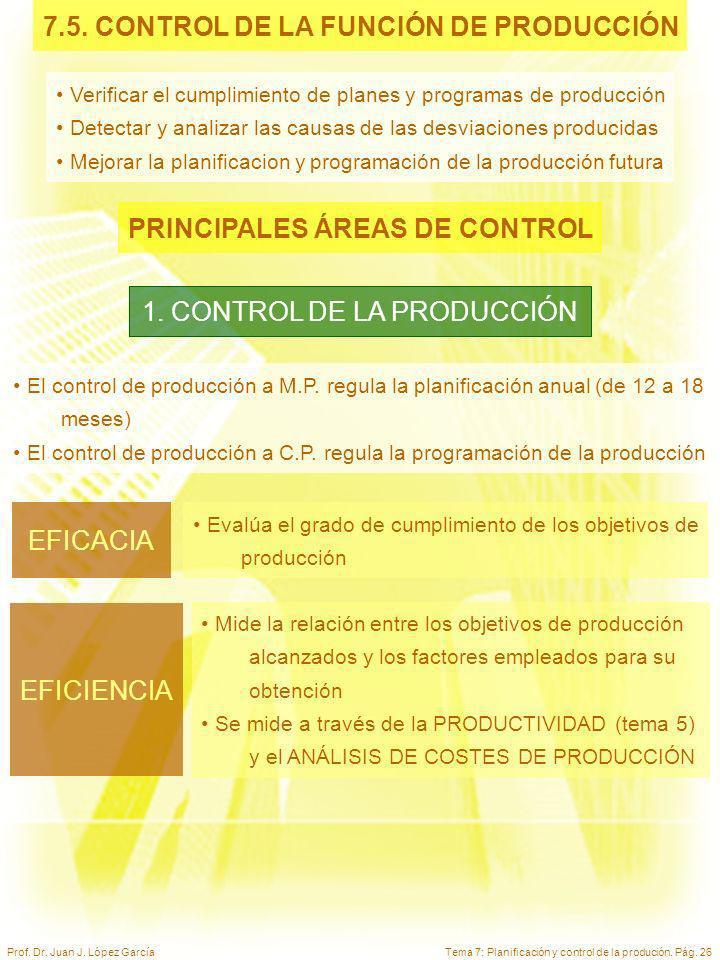 7.5. CONTROL DE LA FUNCIÓN DE PRODUCCIÓN PRINCIPALES ÁREAS DE CONTROL