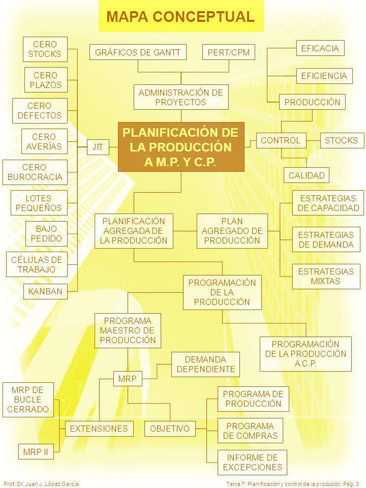 MAPA CONCEPTUAL PLANIFICACIÓN DE LA PRODUCCIÓN A M.P. Y C.P. CERO