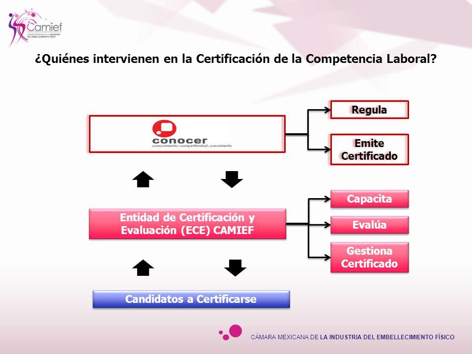 ¿Quiénes intervienen en la Certificación de la Competencia Laboral