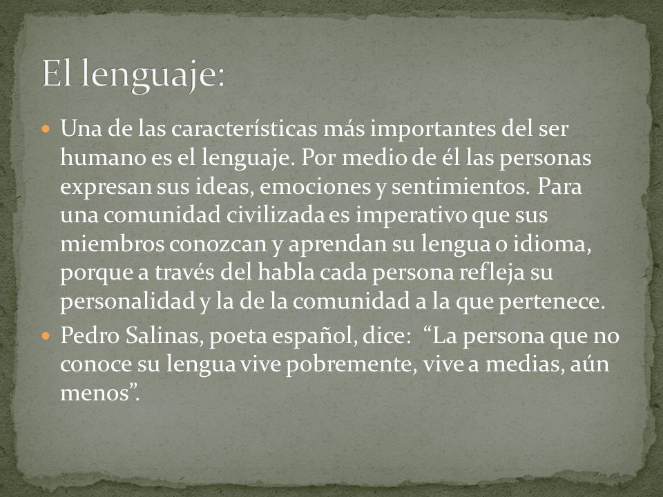 El lenguaje: