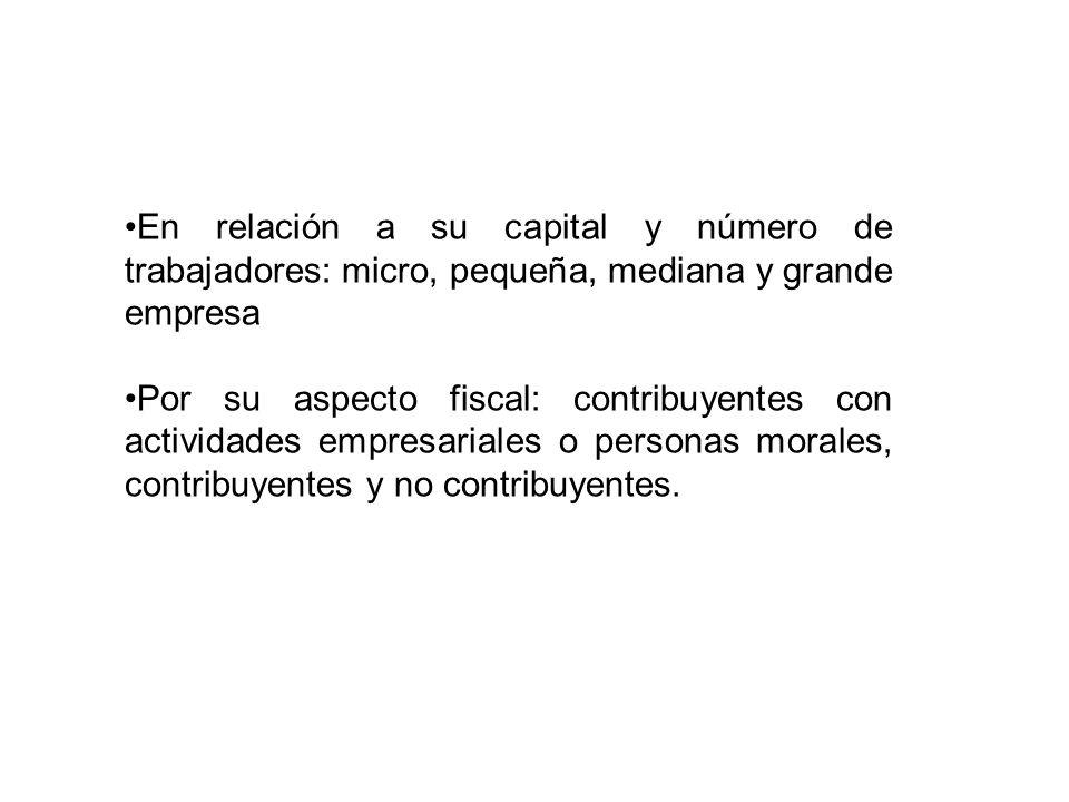 En relación a su capital y número de trabajadores: micro, pequeña, mediana y grande empresa