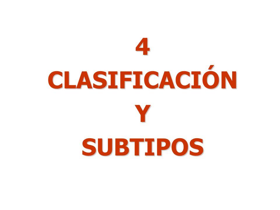 4 CLASIFICACIÓN Y SUBTIPOS