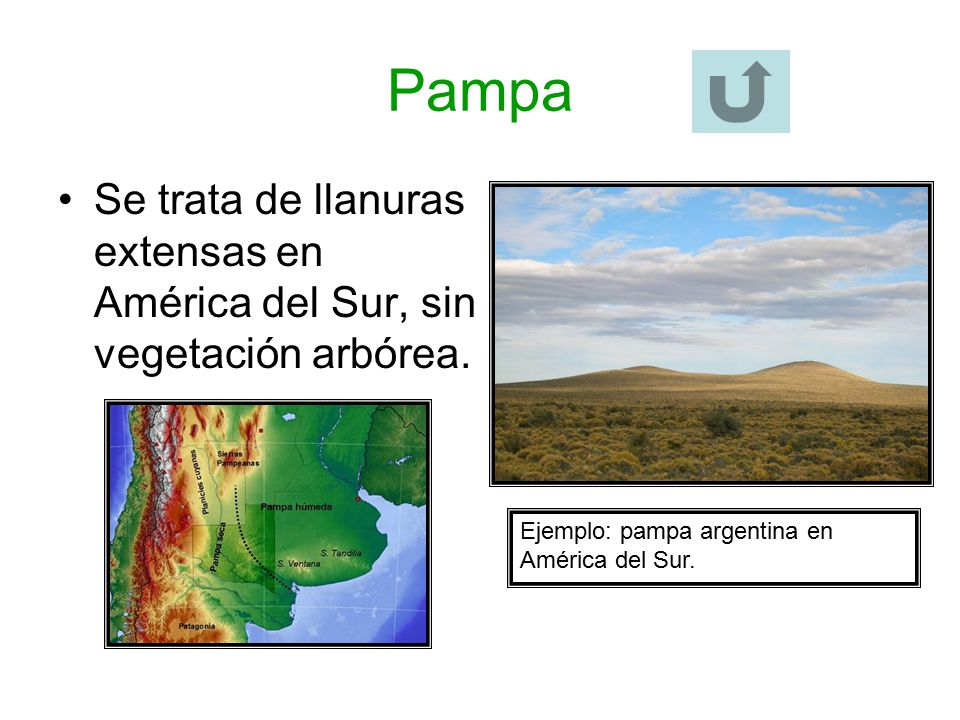 Pampa Se trata de llanuras extensas en América del Sur, sin vegetación arbórea.