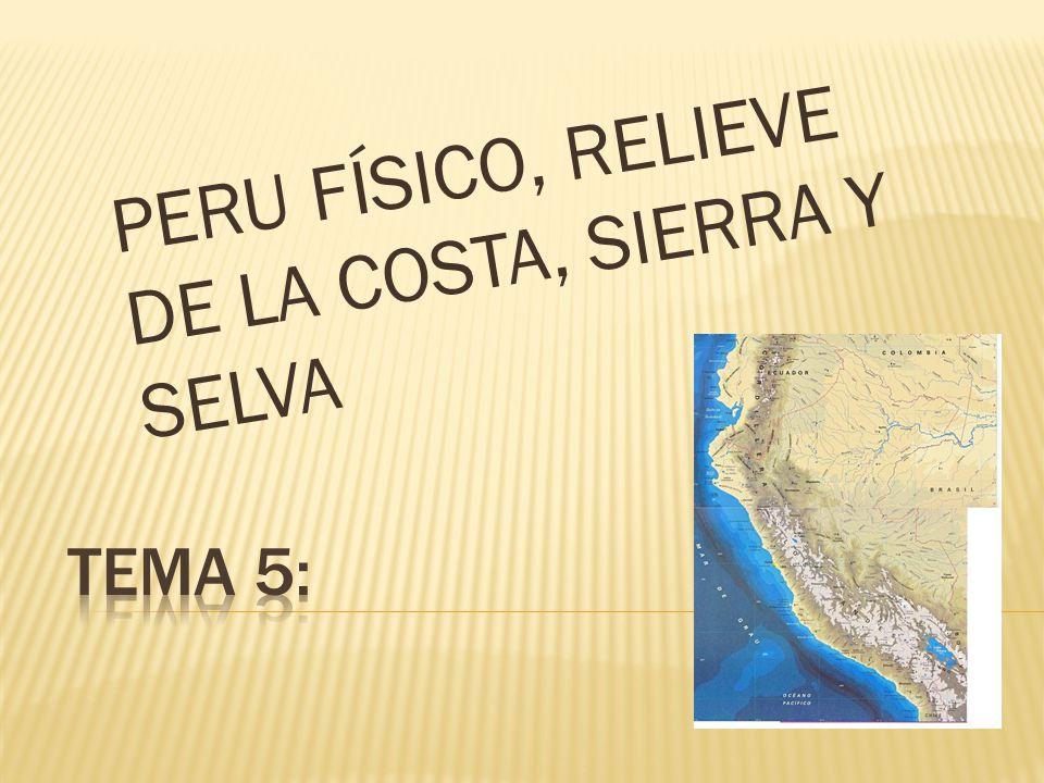 PERU FÍSICO, RELIEVE DE LA COSTA, SIERRA Y SELVA
