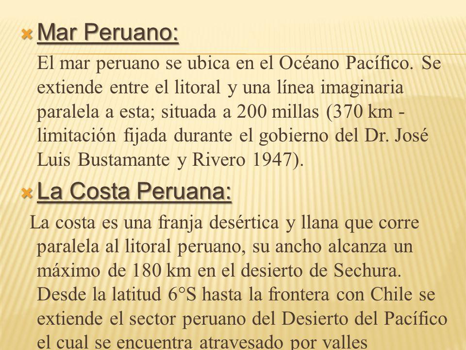 Mar Peruano: La Costa Peruana: